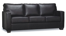 Leather Sofa Beds