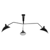 View Black Ceiling Fixture - EEI-1591