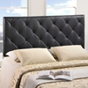 Theodore Faux Leather Headboard - Black - EEI-53-BLK