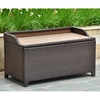 Barcelona Outdoor Storage Trunk / Bench - Chocolate Wicker - INTC-4221-CH