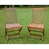Tivoli Outdoor Wooden Folding Patio Chair (Set of 2) - INTC-VF-4116