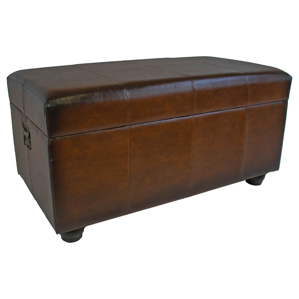 Marvin Brown Storage Bench Trunk Dcg Stores