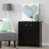 Vito 2 Door Storage Cabinet - Pure Black - SS-10329
