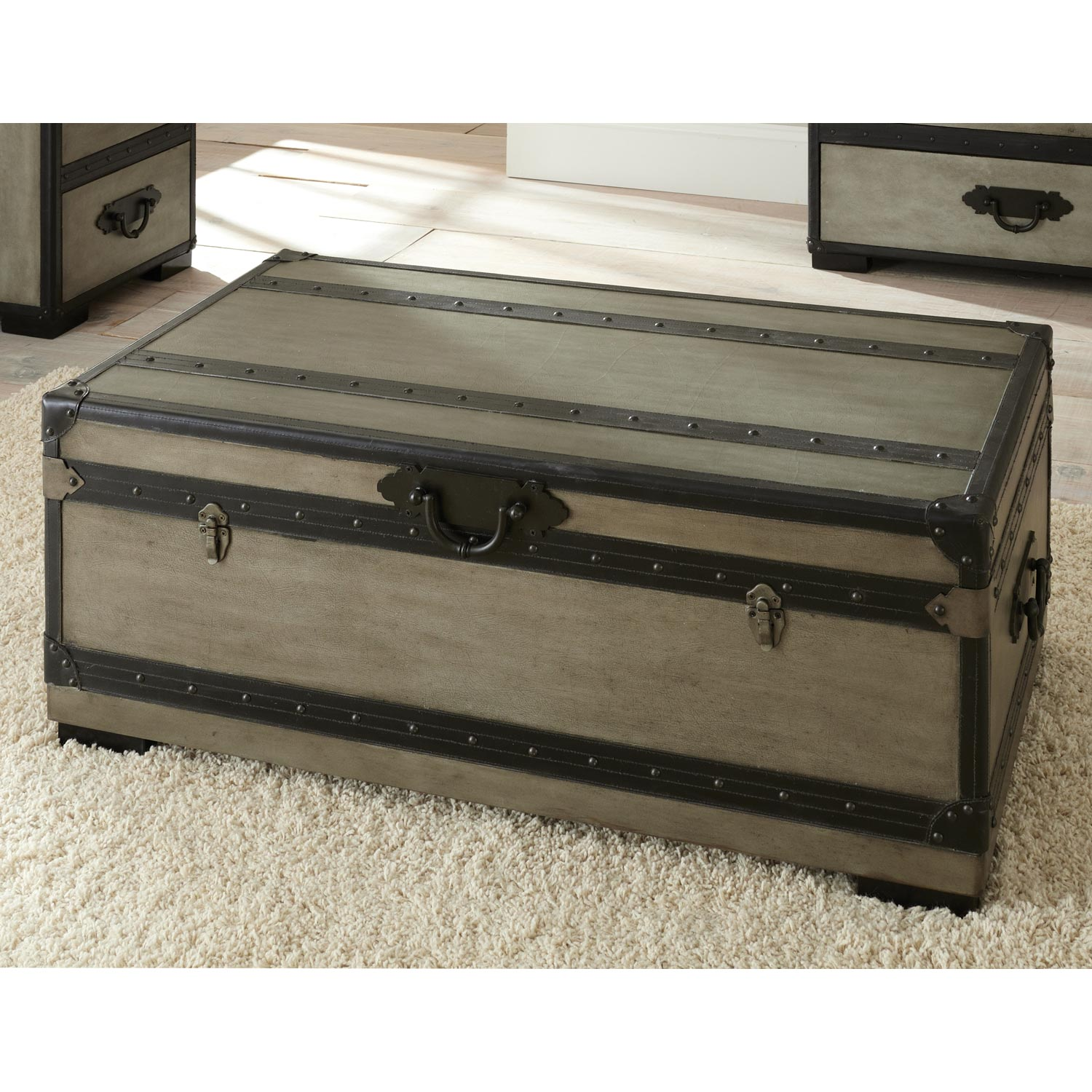 Rowan Storage Trunk / Coffee Table - Leather Accents, Gray - SSC-RW300C