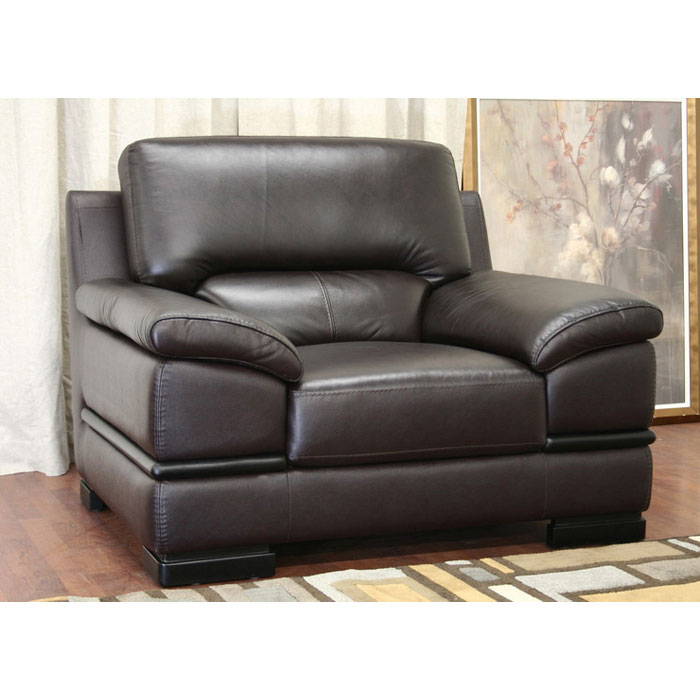 Riley Dark Brown Leather 3-Piece Sofa Set - WI-1267-M2519