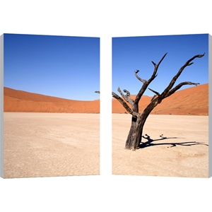 Desert Solitude Mounted Photography Print Diptych - Multicolor