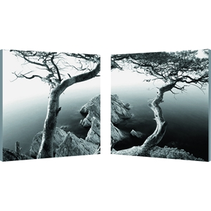Rocky Shore Mounted Photography Print Diptych - Black, White