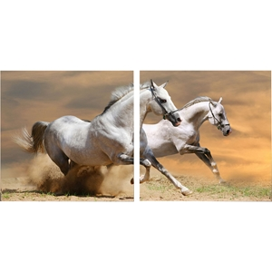 Galloping Grandeur Mounted Photography Print Diptych - Multicolor