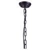 Masterton Distressed Black Ceiling Lamp - ZM-98422