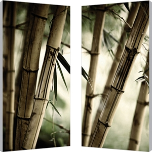 Bamboo Stalks Mounted Photography Print Diptych - Multicolor