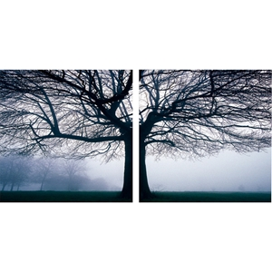 Morning Haze Mounted Photography Print Diptych - Black, White