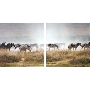 A Zeal of Zebras Mounted Photography Print Diptych - Multicolor