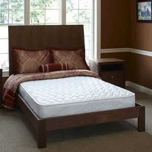 Orthopedic Back-Aid Twin Mattress